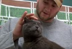 Cat Lost For 4 Years and 2000 Miles is Finally Reunited With Ex Marine