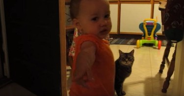 Daddy Captured The Cutest Daily Routine Between His Daughter And Cat- And It`s Too Cute For Words