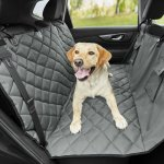Top 10 Best Seat Covers For Dog Hair Reviews 2020 Happy Pets Space