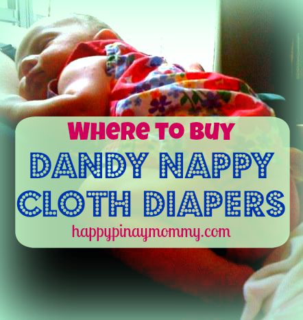 buy Dandy Nappy Cloth Diapers in the Philippines