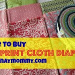 Buy Tula Print CLoth Diapers in the Philippines