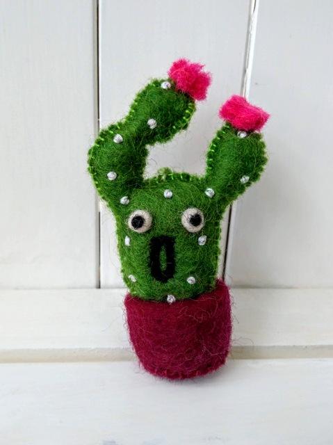 pinky cacti