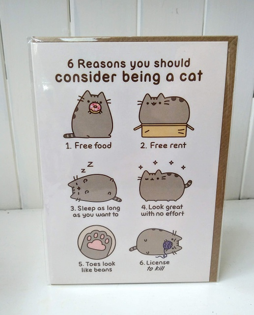 pusheen cat reasons