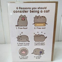 pusheen cat reasons