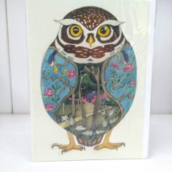 night owl card