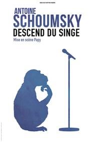happyprod-schoumsky-descend-du-singe