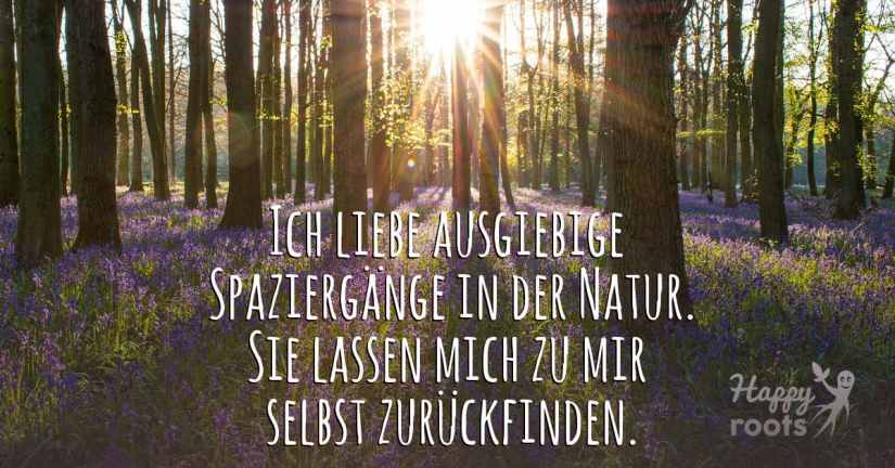 Natur - Waldspaziergang