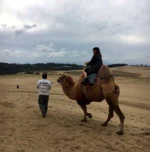 砂丘でラクダに乗った話はこちらから