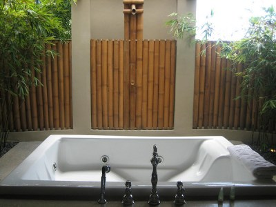The whirlpool tub and the bamboo shower in the outdoor bathroom. There's no indoor bathroom, by the way.