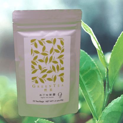 Sencha green tea from Shizuoka, Japan (Tea bag)