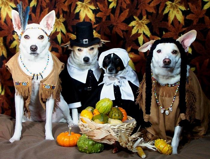 Pet-Friendly Thanksgiving