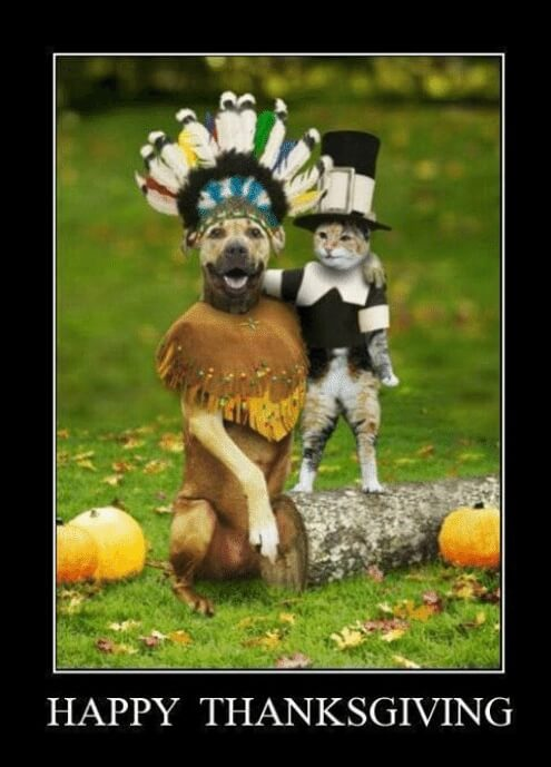 Pictures for Funny Thanksgiving