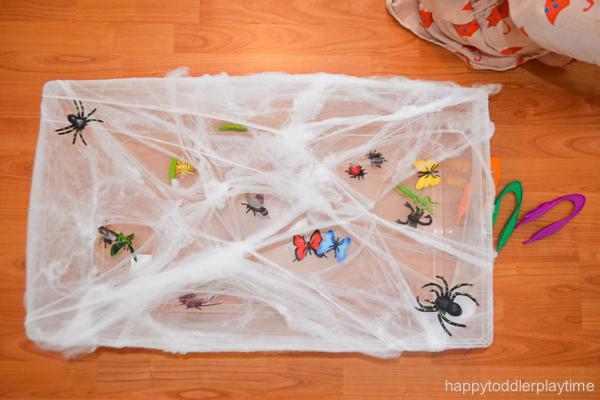 SPIDER WEB RESCUE