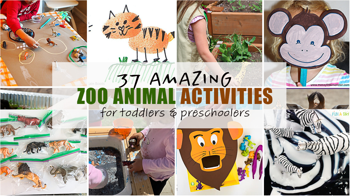 37 Amazing Zoo Animal Activities