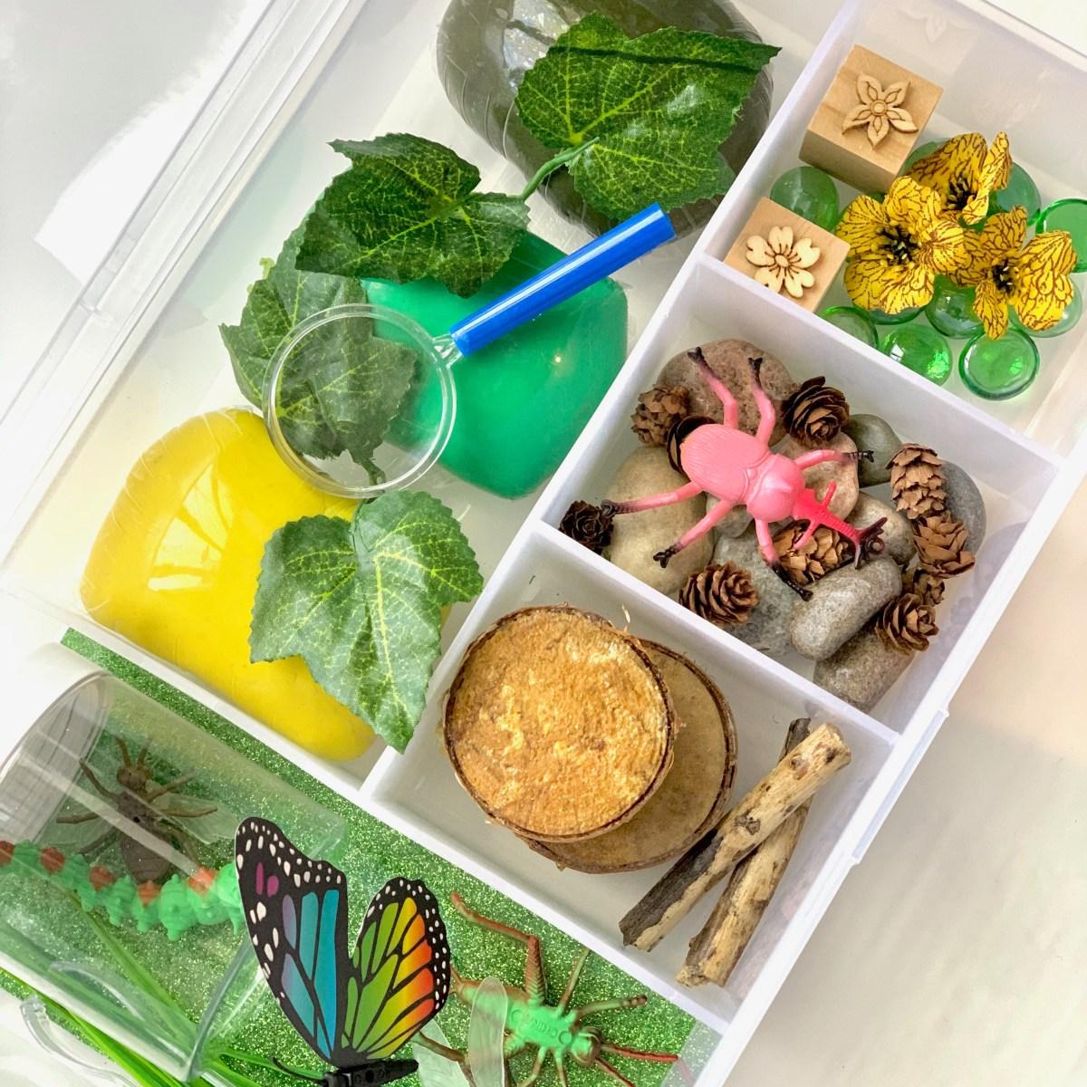 Bug World Playdough Kit