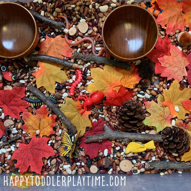 fall nature hike sensory bin