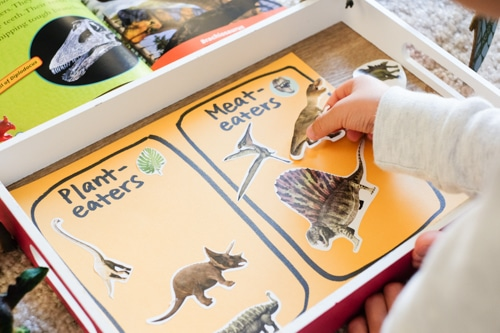 Plant eaters vs Meat eaters dinosaurs learning activity