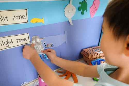 Sunlit zones and twilight zones art activity for preschoolers and kindergarteners