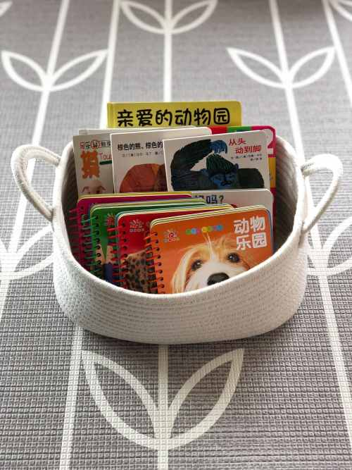 Books in baskets