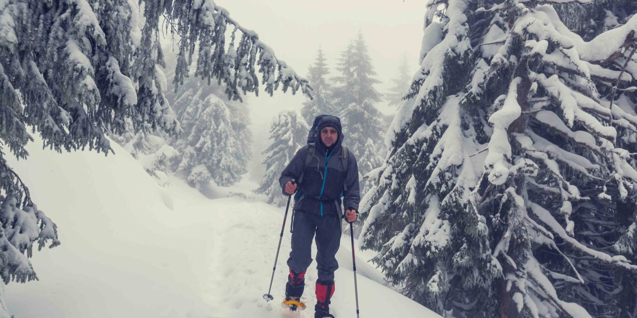 Snowshoeing and Winter Skills in the Alps