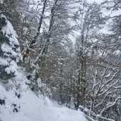 winterwonderland1
