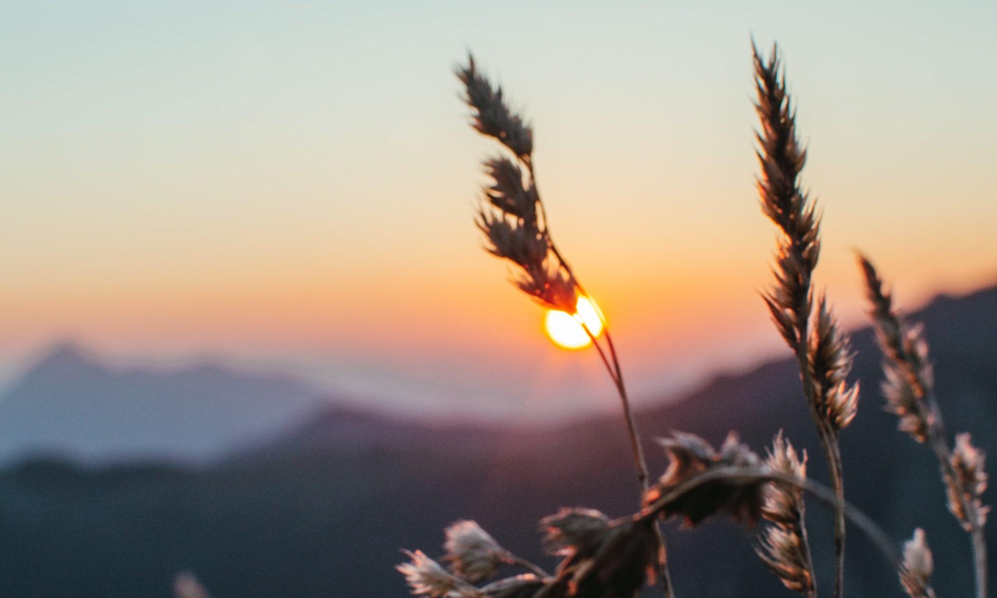 Sonnenaufgang Brecherspitze