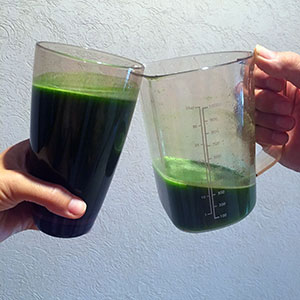 Enjoy Drinking Your Greens!