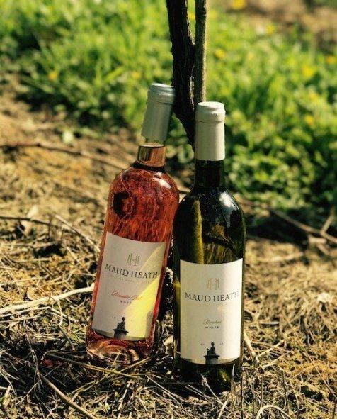 bottles of wine in the sunshine