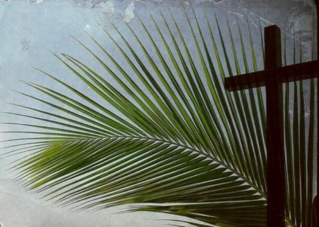 Palm Sunday facts
