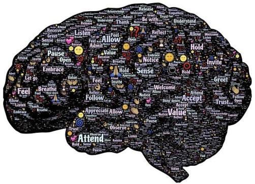 wat is mindfulness precies