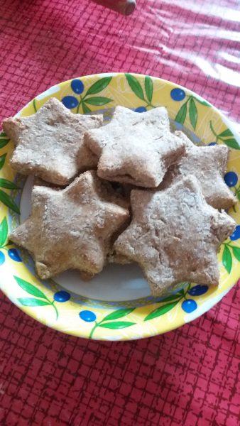 20161220 143212 e1482241912520 338x600 - Recette # 1 : Cookies de Noël (pour chien)