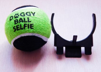 Doggy Ball selfie wanimo
