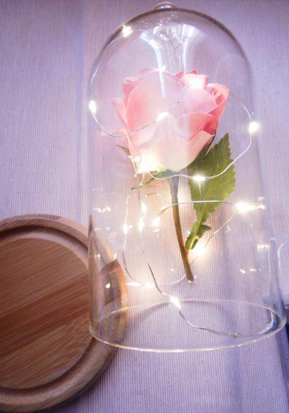 DSCN2423 e1489927682216 421x600 - DIY La rose enchantée de la Belle et la Bête