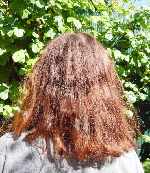 DSCN2510 519x600 - Test capillaire #5 : Pro-Color, la coloration qui répare les cheveux par Schwarzkopf