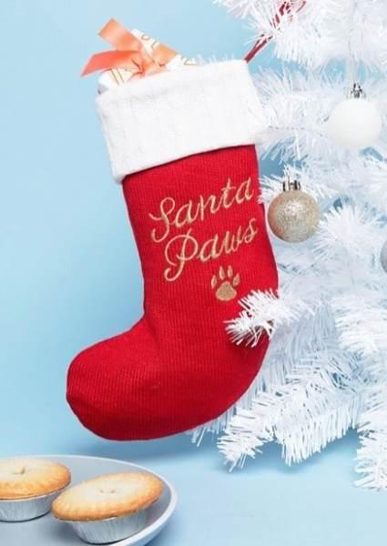 Paperchase - Santa Paws - Chaussette de Noël pour animal de compagnie