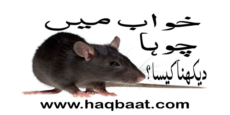 Khawab mai Choohai dekhna? Seeing Rats in a Dream | Haq Baat