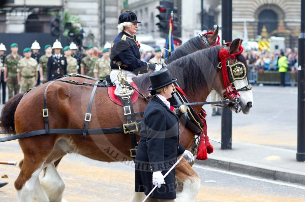The Lord Mayor's Show 2011 - City of London Parade Photos ...