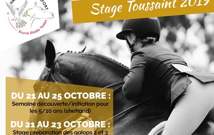 stage-equitation-toussaint-var-callas-poney-club