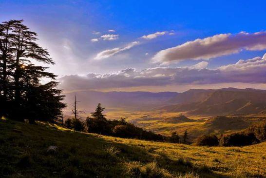 Parc National de Belezma 3