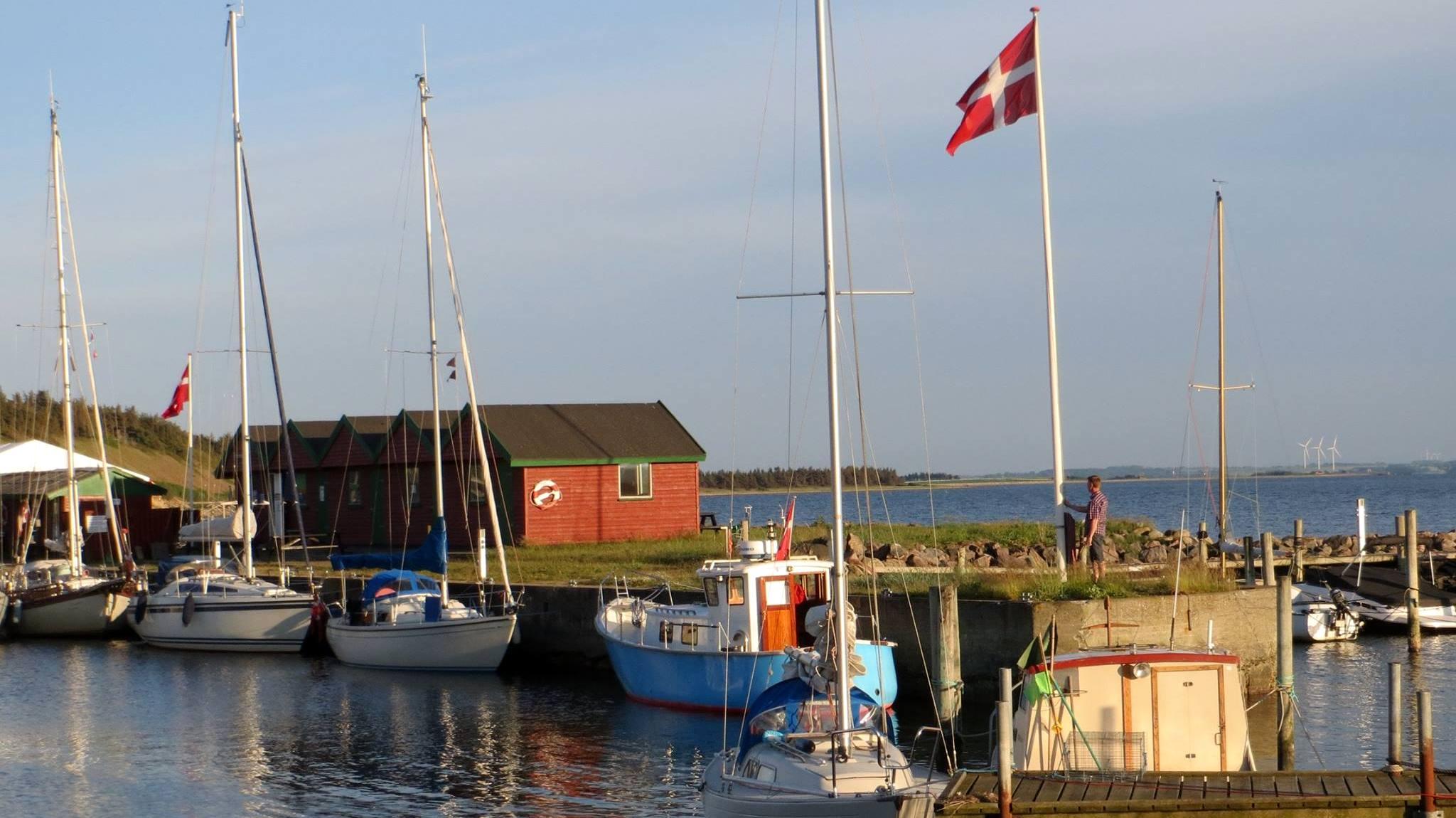 Venø Havn - Harba