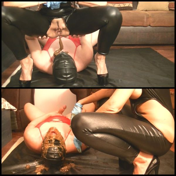 All hot redhead dominatrix human toilet clips what