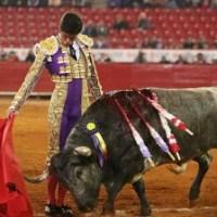 ¿La Fiesta en Paz?Los toros, ¿enfermedad terminal o dolencias corregibles?