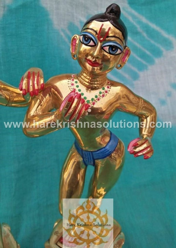 Krishna Balaram 10 inches (3)