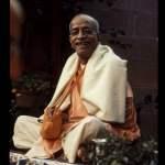 8 Proofs That Srila Prabhupada Is A Pure Devotee