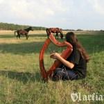 Z końmi arabskimi w SK Niewierz (fot. Sikora)