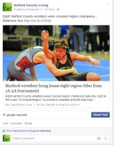 Eight Harford County wrestlers were crowned region champions – Baltimore Sun