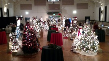 11th Annual Chesapeake Cancer Alliance Festival of Trees