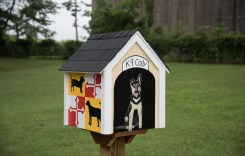 City of Havre de Grace Installs 7th Little Free Library
