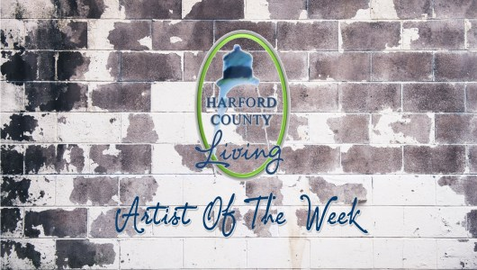 Harford County Living's Artist of the Week – Mitch Lebovic Photography
