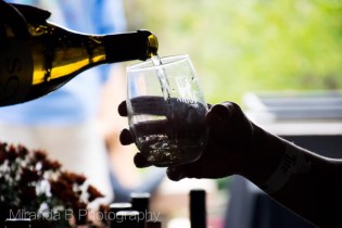 13th Annual Harford County Wine Festival Returns September 29th